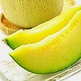 果物 ギフト 静岡県産 高級 メロン 日本が誇る 静岡 マスクメロン 大玉 1玉 1.3kg 以上