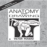 Anatomy & Drawing