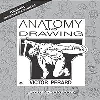 Anatomy & Drawing