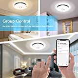 NOWES Smart Ceiling Lights, 18W 1800lm WiFi LED