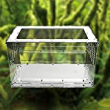 Dalle Craft Acrylic Reptile Terrarium Habitat for Arboreal Tarantulas Chameleon Green Anole or Other Reptiles (20x12x12 inches)