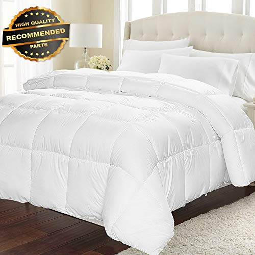 Gatton Premium New Equox All-Season White Quilted Comforter - Goose Down Altertive Queen | Style Collection Comforter-311012351