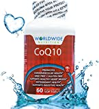 Worldwide Nutrition CoQ10 Dietary Supplement Cardiovascular Health Supports Healthy Heart Muscle Antioxidant Health Supports Digestive Health 100 Milligram 60 Softgels Discount