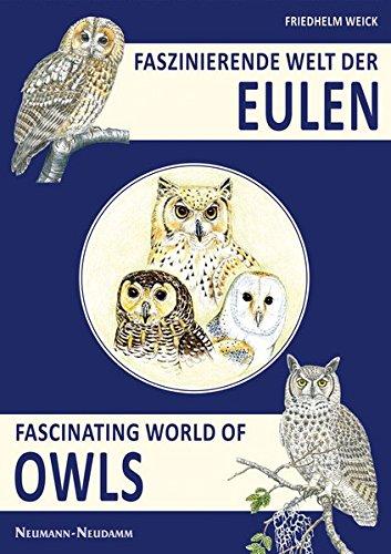 Faszinierende Welt der Eulen: Fascinating World of Owls