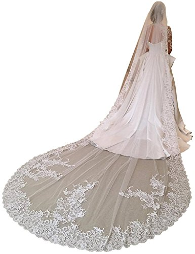 Banfvting Cathedral Long Wedding Veil For the Bride 3M With Lace Appliques One Layer
