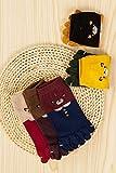 Generic Meng fitted with three pairs of animals fall bear cat cartoon toe socks toe socks toe socks in tube