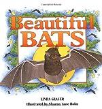Beautiful Bats