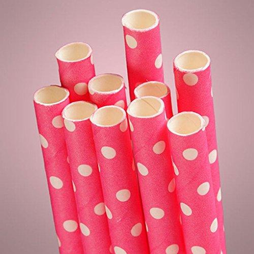 [Mememall Fashion Retro Multi-Color Chevrons Stripe Polka Dot Biodegradable Paper Drinking Straws] (Witch Wig Stripes)