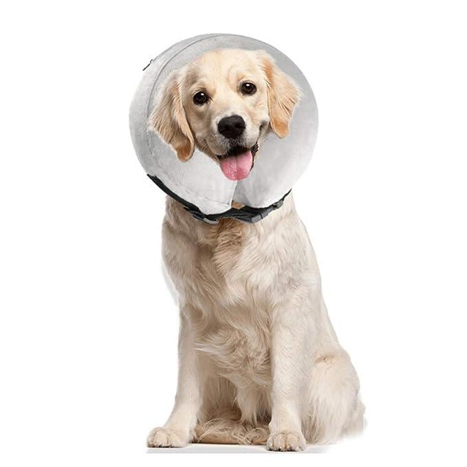 PET SPPTIES Salud Hinchable de Mascota Perro Collares Evitar Mascotas picaduras de y arañazos en Lesiones, hileras, heridas, y erupciones PS005 ...