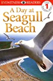 DK Readers: Day at Seagull Beach (Level 1: Beginning to Read)