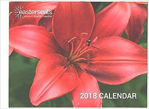 easter seals 2018 calendar easter seals amazoncom books