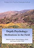 img - for Depth Psychology: Meditations in the Field book / textbook / text book