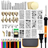 82 PCS Wood Burning Kit, Wood Tool with Adjustable On-Off Switch Control Temperature 200~450 ℃ Professional Wood Burning Pen and New Year DIY Various Wooden Kits Carving/Embossing/Soldering Tips