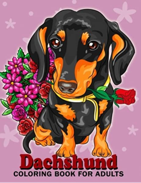 - Amazon.com: Dachshund Coloring Book For Adults: Dog And Puppy Coloring Book  Easy, Fun, Beautiful Coloring Pages (9781986625128): Kodomo Publishing:  Books