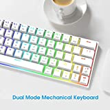 DIERYA 60% Mechanical Gaming Keyboard - White