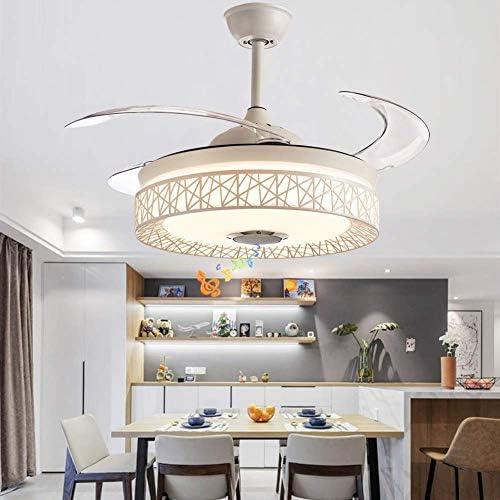 Fandian 42'' Modern Ceiling Fan