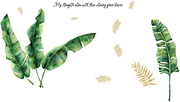 Amazon Com Adfljk Tropical Rainforest Plant Wall Sticker Green Banana Bamboo Leaf Inkjet Wall Stickers Home Children S Room Interior Wall Stickers Furniture Decor Tropical rain forests inhabit the equatorial belt, and are characterized by intense sunlight, heat and large amounts of rainfall. amazon com