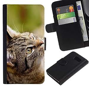 // PHONE CASE GIFT // Moda Estuche Funda de Cuero Billetera Tarjeta de crédito dinero bolsa Cubierta de proteccion Caso Samsung Galaxy S6 / Gray Cat /