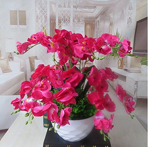 LIXIAOXIN Phalaenopsis Florero Artificial Falso Establecida Decoración Rosa Roja