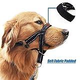 wintchuk Dog Head Collar, Head Halter with