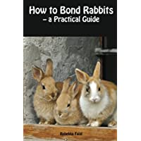 How to Bond Rabbits: - a Practical Guide