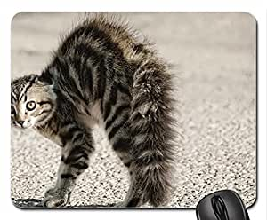 Aggressive kitty Mouse Pad, Mousepad (Cats Mouse Pad)