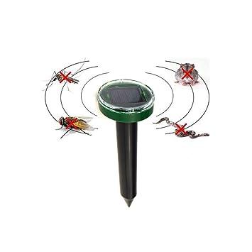 Maulwurfbekämpfung maulwurfabwehr maulwurfbekämpfung maulwurfbekämpfung