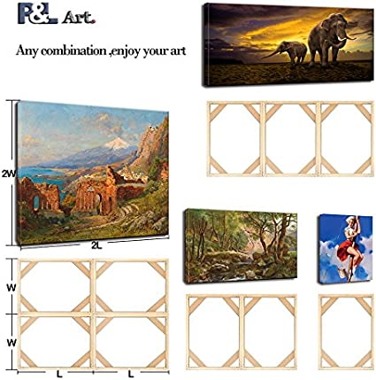DIY Solid Wood Canvas Frame Kit for Oil Painting /& Canvas Wall Art-Easy to Build Canvas Stretching System-The 100/% Customizable Canvas Stretching Wooden Frame System! Customized Size B