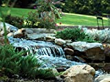 Waterscapes International BF1250 Pond Filter