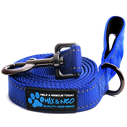 Max and Neo Reflective Nylon Dog Leash - We Donate a Leash to a Dog Rescue for Every Leash Sold (Blue, 6 (Lead Nylon Reflective Leash)