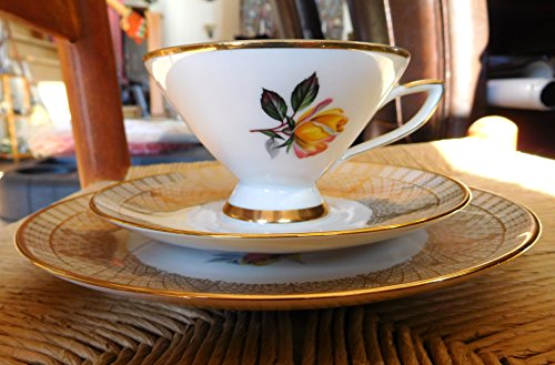 (Winterling Bavaria Germany 121 Footed Cup, Saucer and Plate Gold and Flowers )