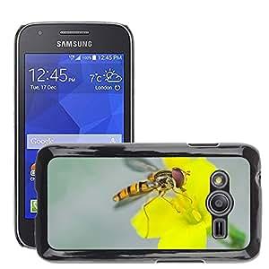 Cas Coq Case Cover // M00147319 Hover Fly Insecto Naturaleza Macro // Samsung Galaxy Ace4 / Galaxy Ace 4 LTE / SM-G313F