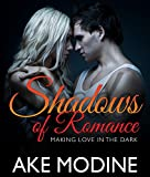 shadows of romance making love in the dark love triangle romance