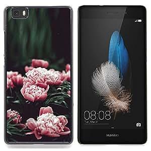 "Planetar ( ¿Son coloridas Rocas del arco iris"" ) Huawei Ascend P8 Lite (Not for Normal P8) Fundas Cover Cubre Hard Case Cover"