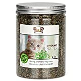 MR-BABULA Organic Catnip, Natural North American Variety, Selected Fresh Catnip Leaves & Bud 3OZ. Review