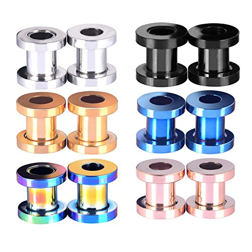 12pcs Hollow Screw Stainless Steel Ear Gauges Flesh Tunnels Plugs Stretchers Expander (Hollow Tunnel)