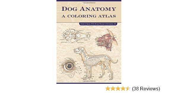 Amazon Dog Anatomy A Coloring Atlas 9781893441170 Robert Kainer Thomas O McCraken Books
