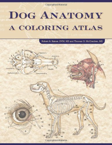 Pdf Crafts Dog Anatomy: A Coloring Atlas