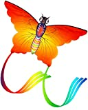 Aitey Rainbow Butterfly Kites, Easy Fly Kites for Kids and Adult, One of the Best Outdoor Games and Activities, with 165'' of Line and Handle - Great Beginner, Amateur Kite