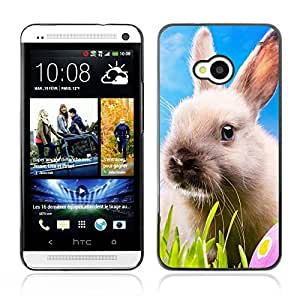 Graphic4You Cute Rabbit Bunny Animal Design Hard Case Cover for HTC One (M7)
