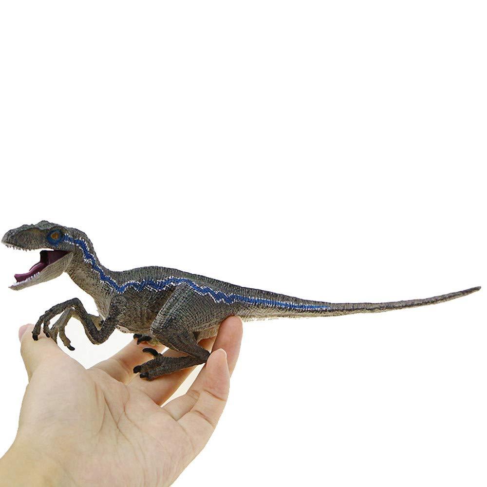 HuaMore Velociraptor Bleu Action Dinosaure Figure animali/ère Jouet mod/èle Collectionneur