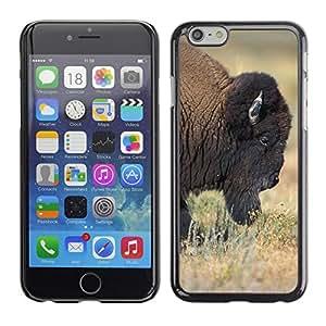"GoGoMobile Slim Protector Hard Shell Cover Case // M00123571 Bull Half Front Profile Buffalo // Apple iPhone 6 4.7"""