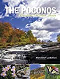 The Poconos: Pennsylvania's Mountain Treasure