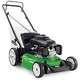 Lawn-Boy 10736 With Honda 160 cc Engine, High Wheel Push Gas Lawn Mower, 21-Inch