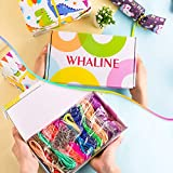 Whaline 30 Colors Plastic Lacing Cords with 20
