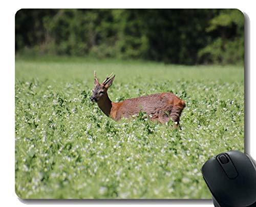 Gaming Mouse Pad Design,Caviar Deer Nature -Stitched Edges