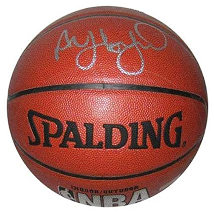Image Unavailable. Image not available for. Color  Al Horford Autographed  Signed Auto NBA I O Basketball Full Signature - Certified Authentic 2987eb081