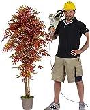 Acero Artificiale Rosso - H.100 cm - Tronchi Veri - Con Vaso