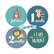 Baby Monthly Milestone Stickers (Set of 20) - Birth to 12 Months + 7 Bonus Achievement Stickers