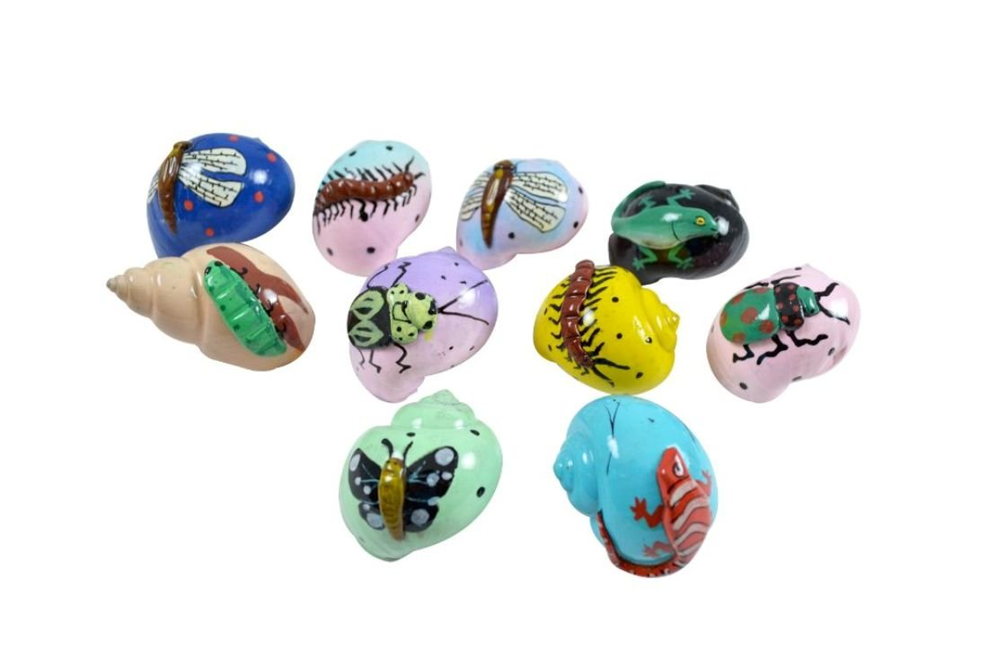 10 Creature Designs Hermit Crab Shells 1-2'' (Opening 0.5-1''), Pet Crab Home Shell (set of 10)